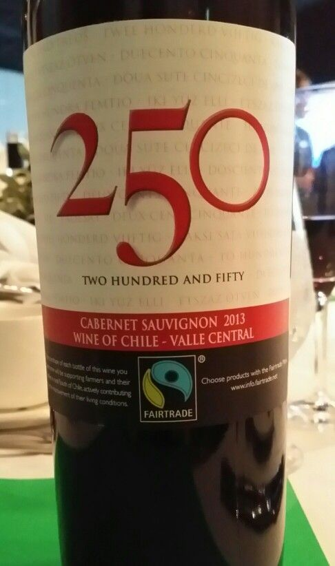 valle central chile cabernet suavignon 2013